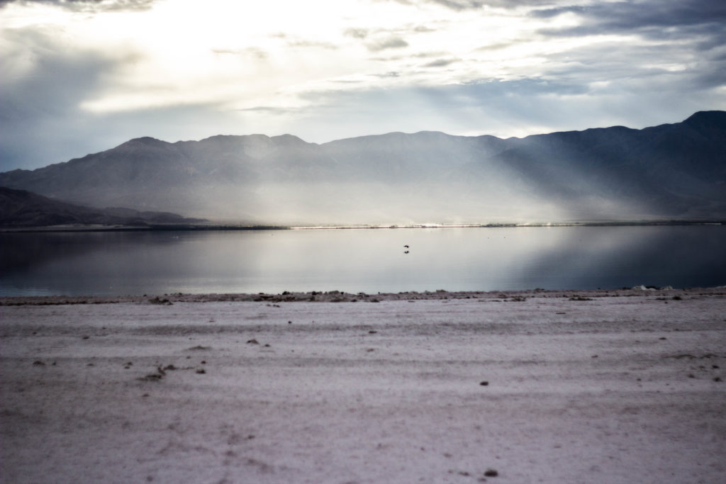 venice-beach-salton-sea-foto-patrik-appelquist-134